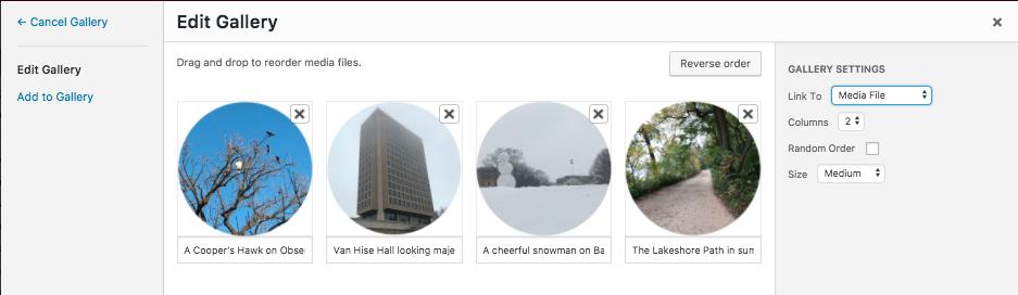 screenshot of the gallery settings